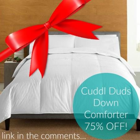 cuddl duds down comforter