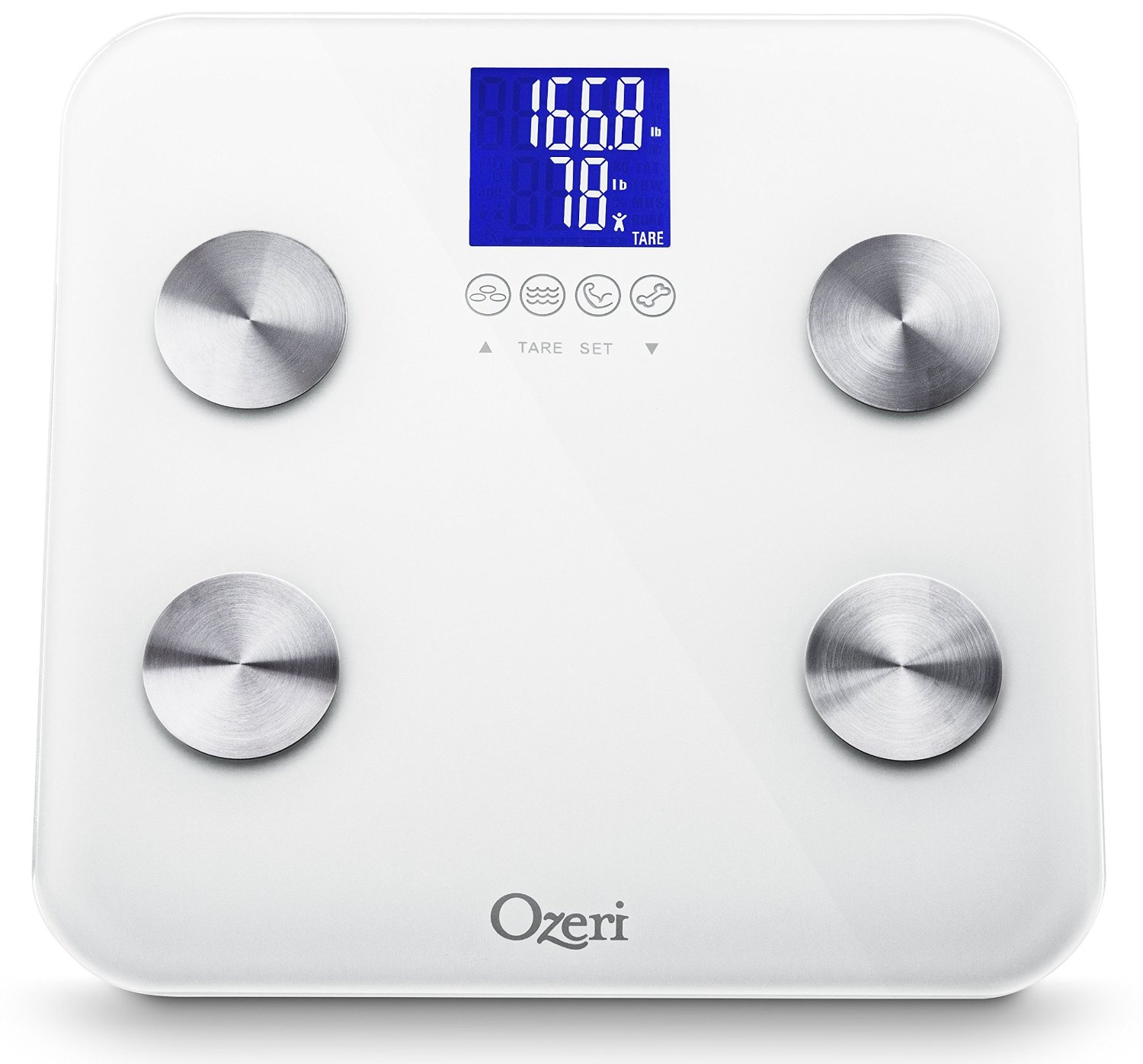 The Best Scale on Sale