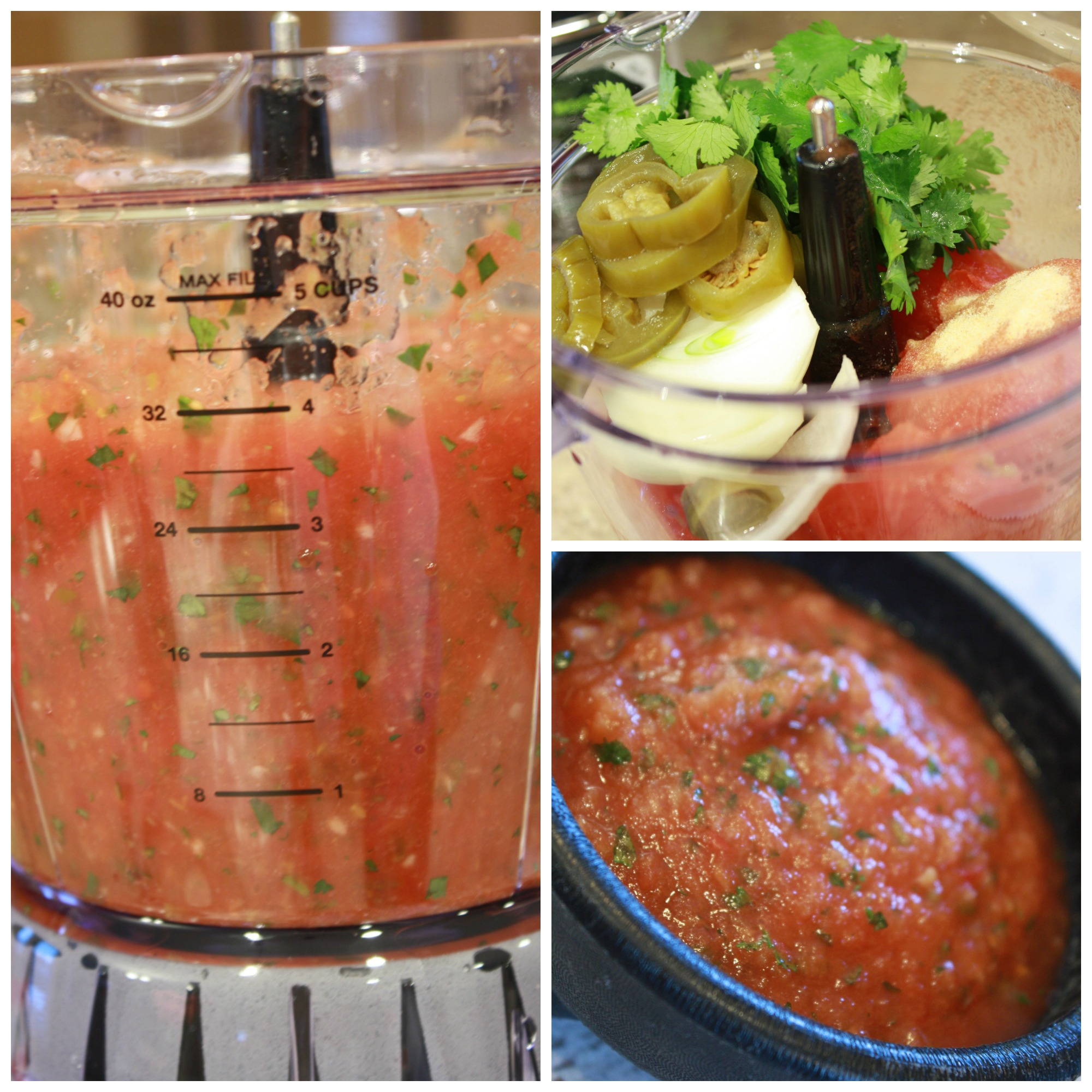 Canned Tomato Salsa Appetizer Recipe -
