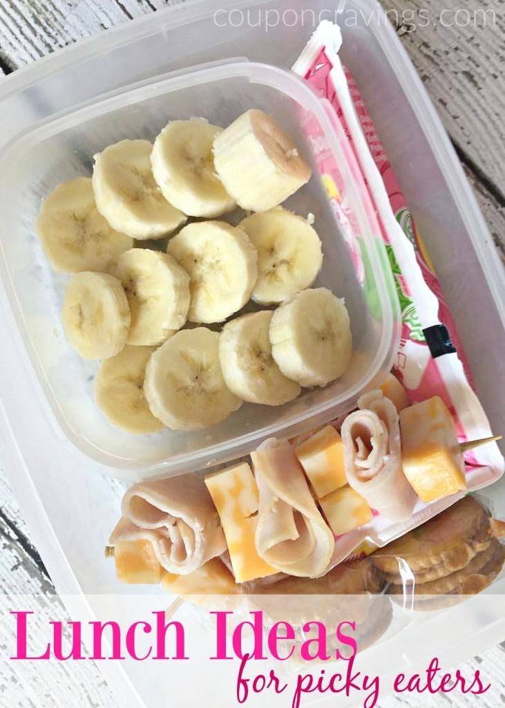School Lunch Ideas For Picky Kids