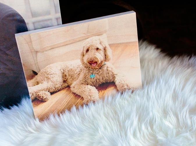 FREE 5×7 Wooden Photo Board ($40 Value!)
