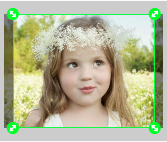 FREE 8×10 Walgreens Photo Print ($3.99 Value)