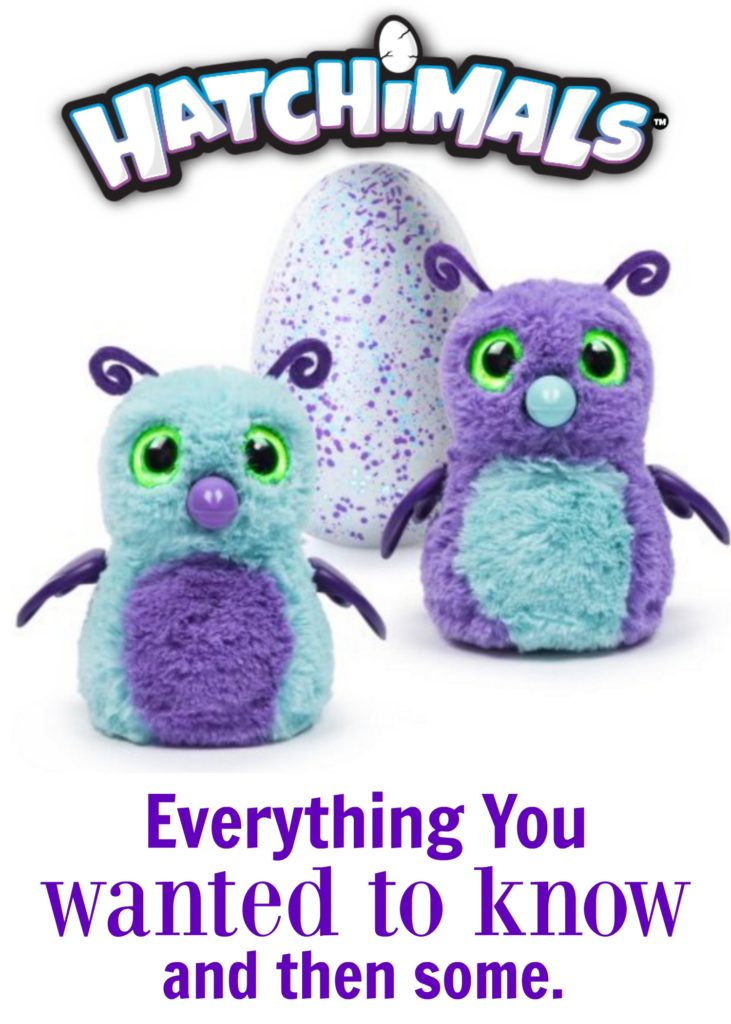 The Hatchimals Toy is here! Everything you wanted to know about Hatchimals, where to get them and more!