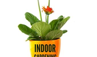 """Free eBook """"Indoor Gardening for Beginners"""""""