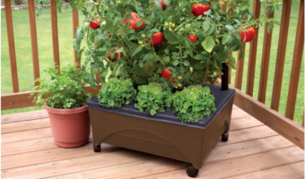 Lowe's.com: Earth Brown Resin Raised Garden Bed Only $19.98!