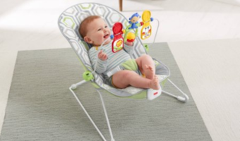 Fisher-Price Baby's Bouncer Only $23.99!