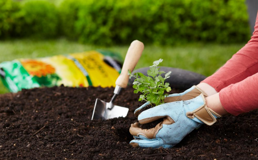 Miracle gro garden soil only 2 per bag - Miracle gro all purpose garden soil ...
