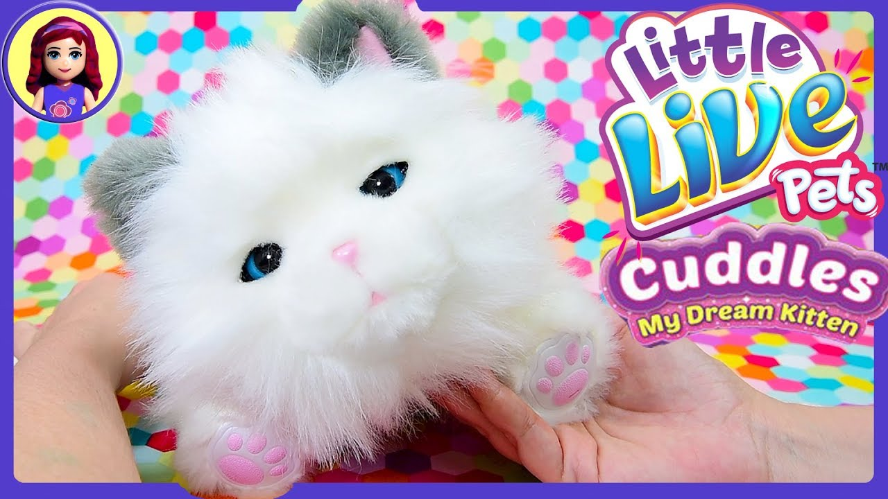 Great Price On Little Live Pets Cuddles My Dream Kitten