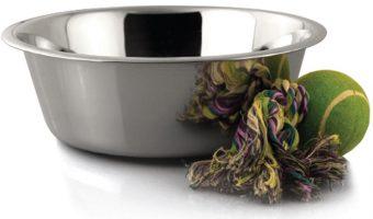 Bergan Large Stainless Steel Pet Bowl $5.15