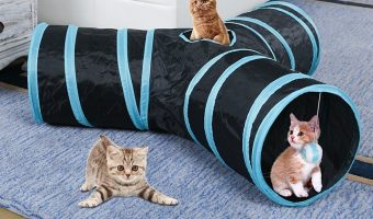 CO-Z Collapsible 3 Way Cat Tunnel with Peek Hole $4.95 (reg. $10.99)
