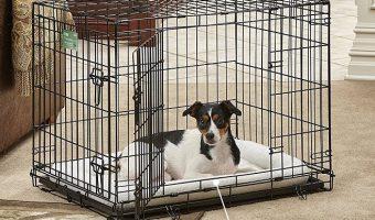 MidWest Double Door 30″ Folding Metal Dog Crate $20.39 (reg. $69.99)