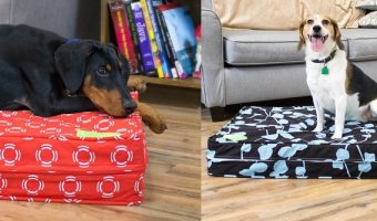 Orthopedic Dog Beds As Low As $55.99 Today Only (reg. $75.99+)