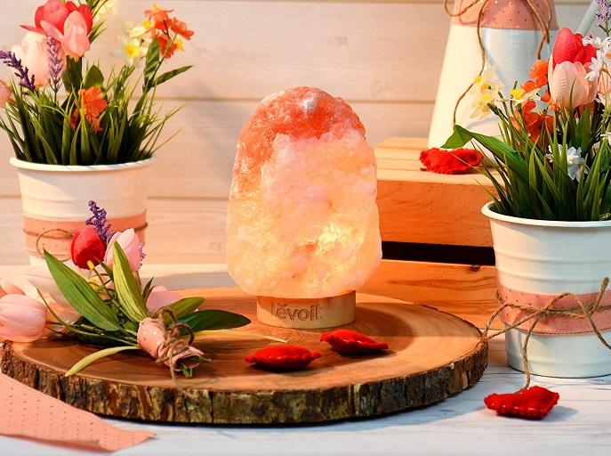 Levoit Kana Himalayan Salt Lamp 19 85 Reg 49 99