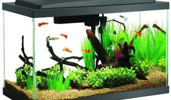 Aqueon 10gal. Aquarium Starter Kit $44.99