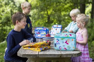 Wildkin Insulated Lunch Boxes