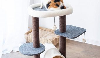Low Price On PetPals Cat Tree Cat Tower After Coupon Code