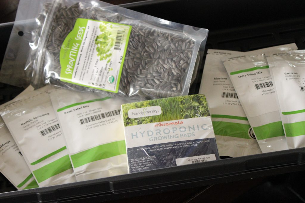 microgreen seeds and trays